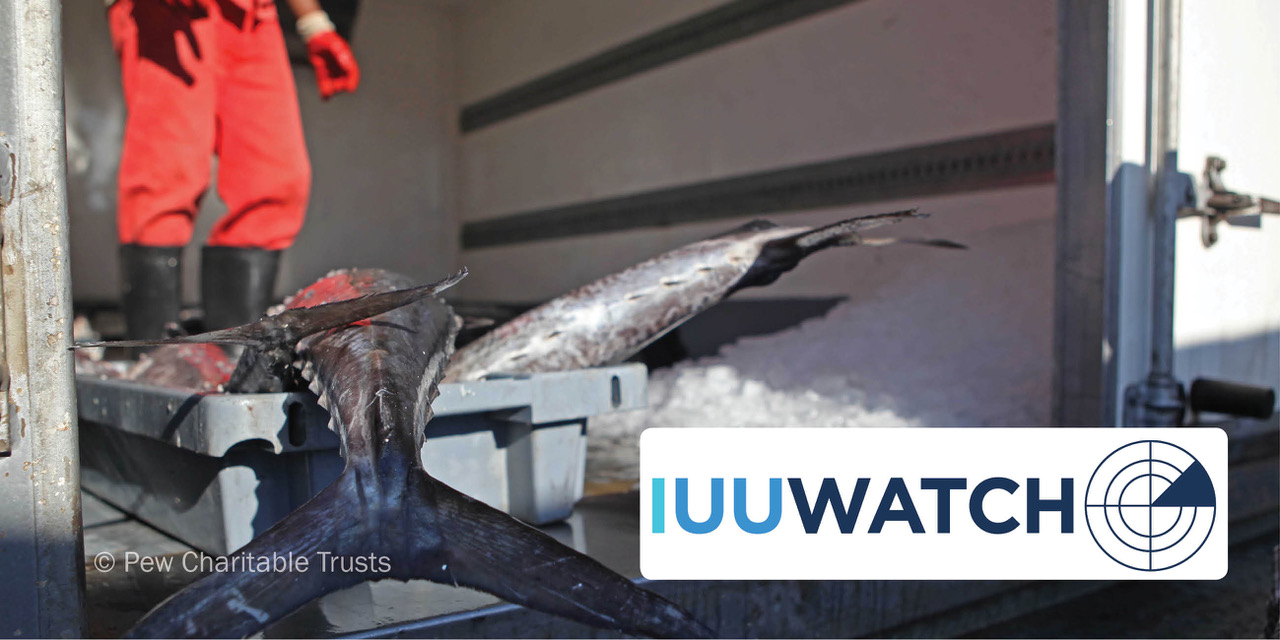 Japan Ratifies International Treaty Tackling Iuu Iuu Watch